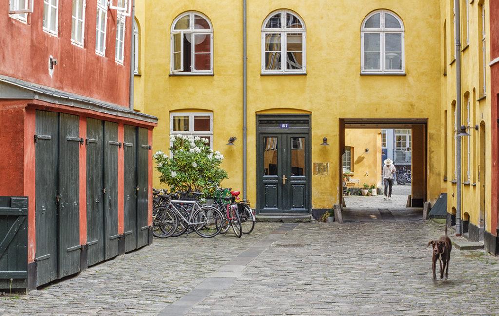 Bild 3 - Roger Bengtsson
