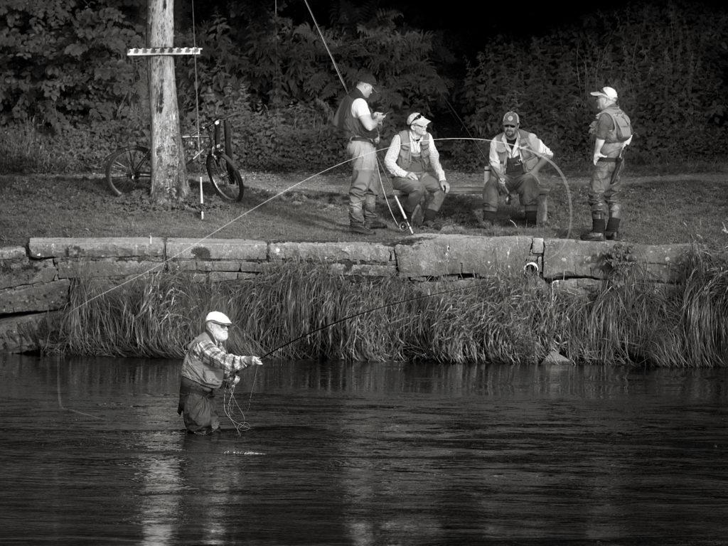 Foto: Magnus Karlsson - Fiske i Ätran
